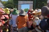 Hats, hats
