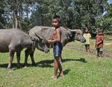 children w buffalo.jpg
