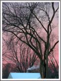 December 10 - A Cold Morning