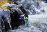 Bubbles-26 *