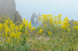 Crimea. Karadag reserve