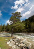 republic of Karachaevo-Cherkessia, Big Zelenchuk river