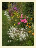 Flowers7039.jpg