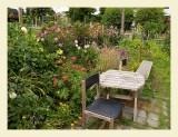 Garden7030.jpg