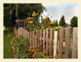 GardenFence7020.jpg