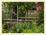 GardenFlowers7035.jpg