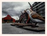 OlympicVillage-Bird-9672.jpg