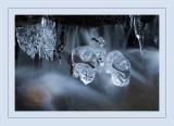 Ice cold.jpg