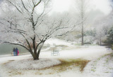 southern blizzard  :)