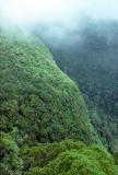 Fog on the escarpment