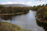 Creek in The Burren