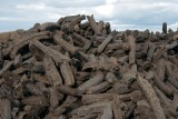 Cut peat stacked up