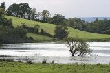 Lough Oughter area