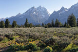 Nez Perce, Teewinot Mountain, Grand Teton, Mount Owen and Rockchuk Peak