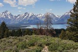 Teton Range and Jackson Lake