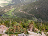 Switchbacks as seen from Rainbow Curve on Trail Ridge Road