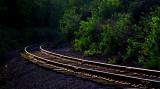 Rails through Kentucky.jpg
