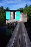323 DSC_5303 Bocas_12_2007.JPG