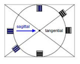 sagittal and tangential.JPG
