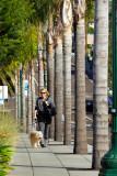 Scenic Sidewalks