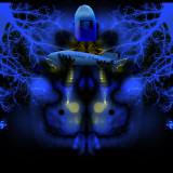 Bluebot.jpg