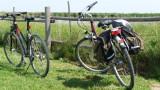 biking tour, Neusiedlersee