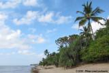 Coastal Tanzania (Tanga & Pangani)