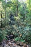 Cascade de Brisecou