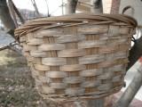 basket in a tree