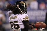 Jacksonville Jaguars CB Reggie Nelson