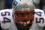 New England Patriots linebacker Tedy Bruschi