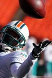 Miami Dolphins cornerback Will Allen