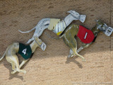 Tampa Greyhound Track
