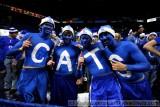 University of Kentucky Wildcats fans