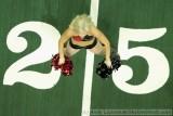 Orlando Predators cheerleaders