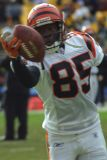 Cincinnati Bengals WR Chad Johnson
