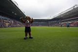 PSV Mascot: Phoxy