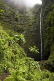 Waterfall, Caldeir�o Verde