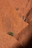 No Water, Ayers Rock (Uluru)