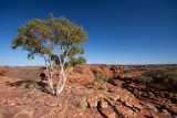 Kings Canyon Lookout