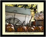 September 2008 - Harvest On The Farm - Becky Greife