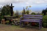 Lavender Farm on Maui