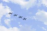 Wings over Whiteman 2010