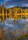 Alaska Evening.jpg