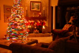 Rockin round the Christmas tree