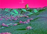 Criss Cross Landscape EXP