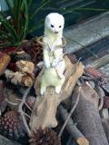 ferret fawcett - the later years