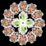 Combination of flowers