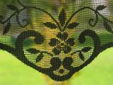 Curtains - Veils - Laces