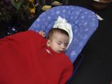 Asleep in the Garden.JPG